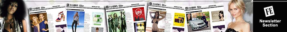 FE Newsletter Section